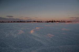 Lav sol over snødekt vidde